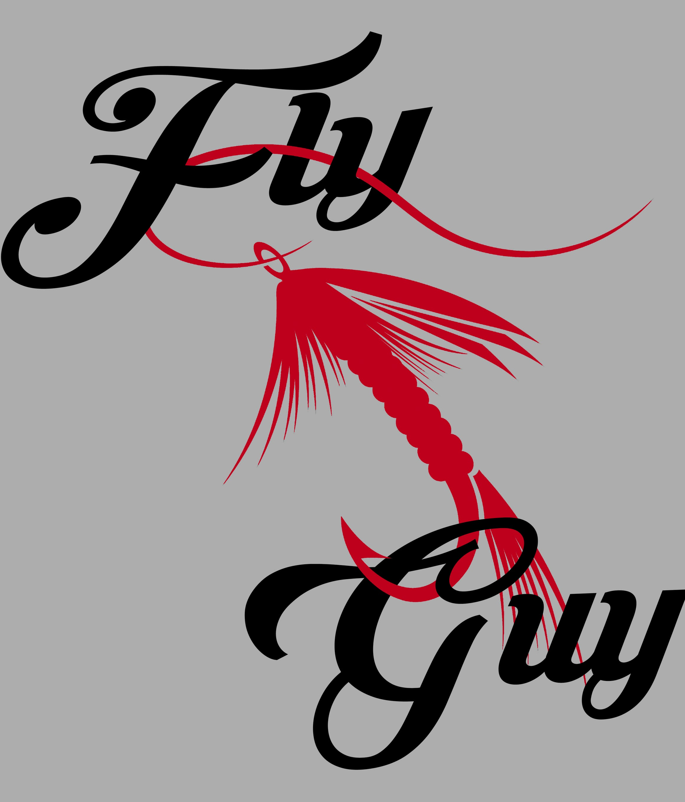 FLY GUY T-SHIRT DESIGN CLOSEUP