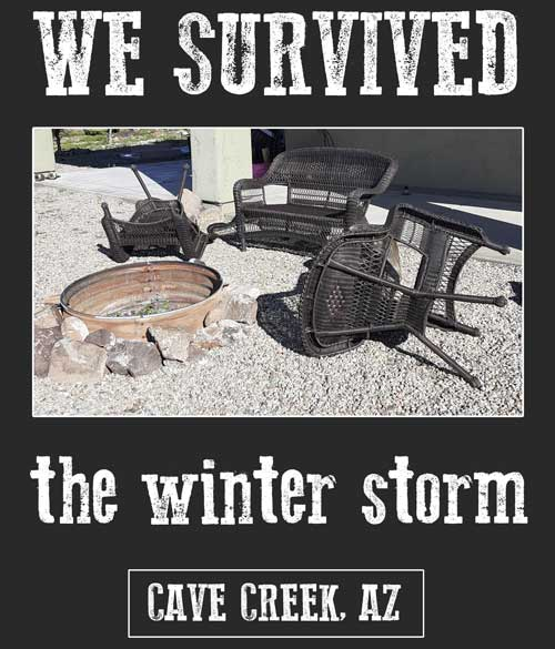 Arizona winter storm t-shirt funny souvenir
