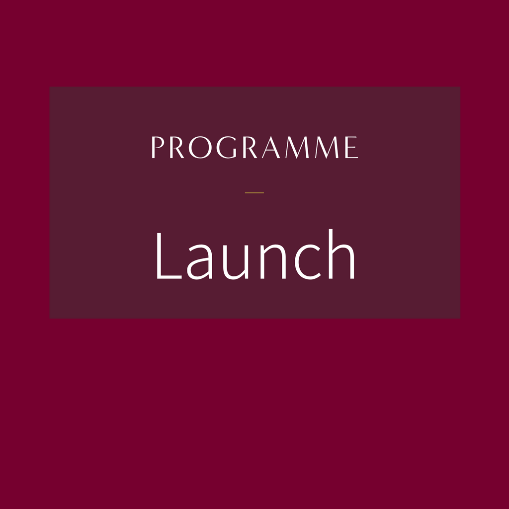 Programme (Launch, Growth, Franchise, Investment or Exit)