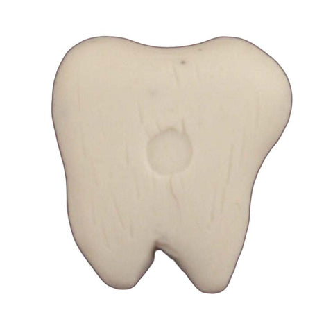 Tooth - B454