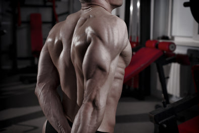 8 Triceps Exercises For Mass And Angularity