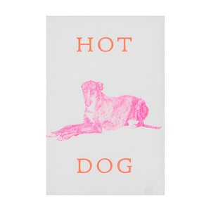 Marke Newton A3 Print - Hot Dog