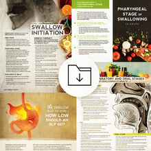 Med SLP Bundle: Stages of the Swallow
