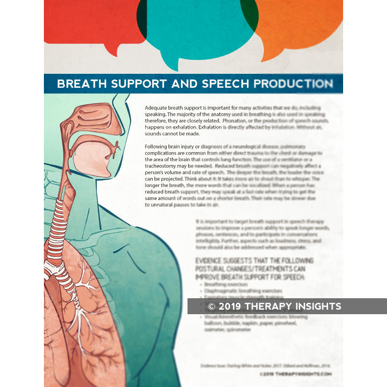 The Relationship Between Breath Support and Speech Production