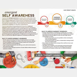 Handout: Emergent Awareness