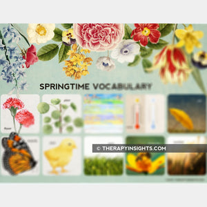 Spring Time Vocabulary Activity Pack