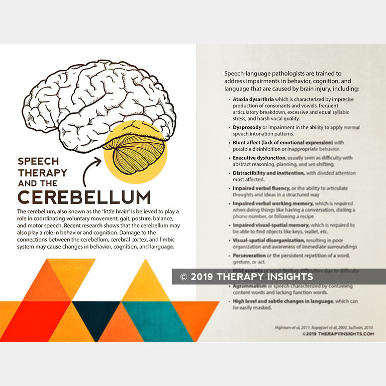 Speech therapy and the cerebellum. Speech therapy handouts and materials for adults. Therapy Fix. Therapy Insights.