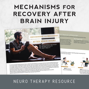 Mechanisms for Recovery: Spontaneous Recovery, Neuroplasticity, and Adaptability