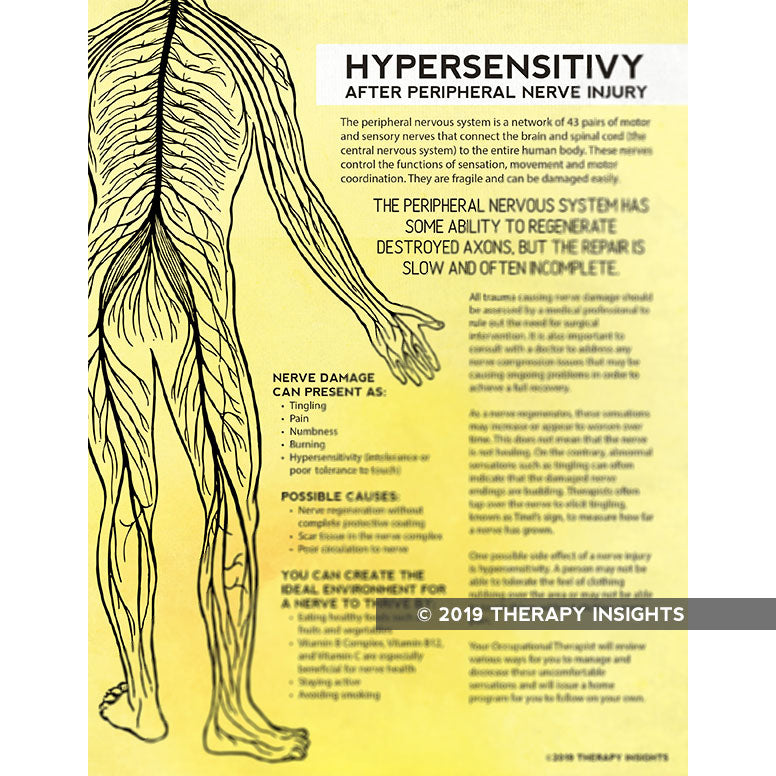 Nerve Hypersensitivity - Therapy Insights - Therapy Fix