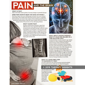 Pain and the brain - working with physical therapists to manage chronic pain - materials and resources for physical therapists - PT - Therapy Insights - Therapy Fix