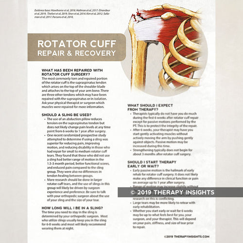 Early guidelines for rotator cuff repair. Health literacy handout for physical therapy patients. Therapy Fix. Therapy Insights.