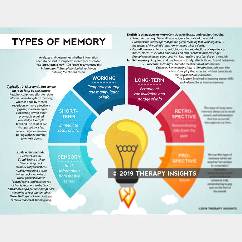 Load image into Gallery viewer, Types of memory - sensory memory - short-term memory - working memory - long-term memory - retrospective memory - prospective memory - visualizing memory and the brain - speech therapy materials for adults - Therapy Insights - Therapy Fix