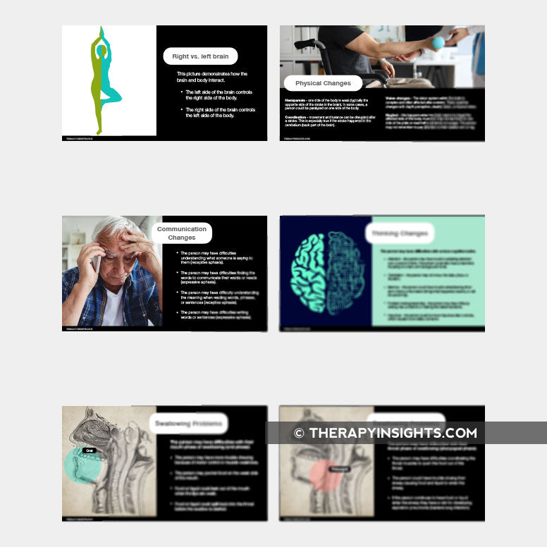 Load image into Gallery viewer, Slide Deck: Stroke Education for Survivors, Family Members, and Caregivers