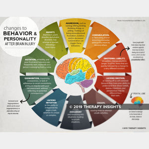 Brain Injury Bundle: Awareness, Insight, and Behavior After Brain Injury