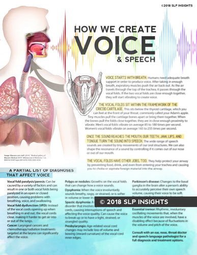 SURPLUS SALE - Handout: How We Create Voice