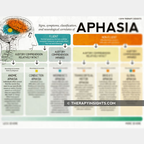 Handout: Types of Aphasia and their Neurological Correlates