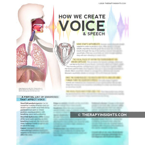 Handout: How We Create Voice and Speech