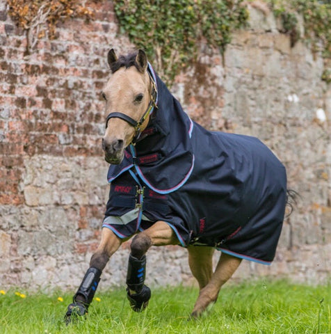 Amigo Bravo 12 Plus Pony Turnout Lite- Rain Sheet