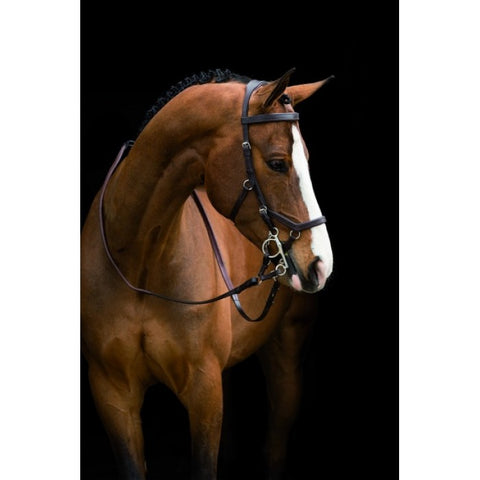 Rambo Micklem Original Competition Bridle with Reins - Black
