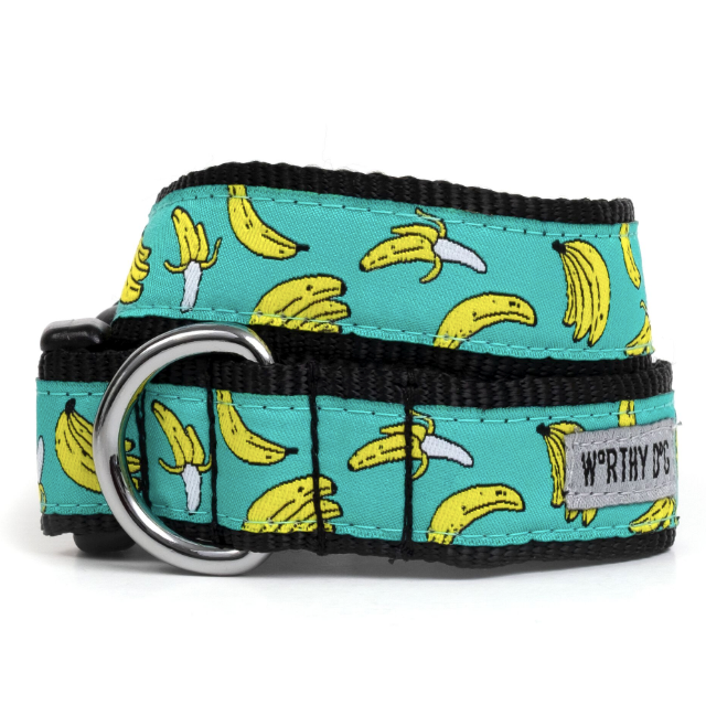 Go Bananas Dog Collar