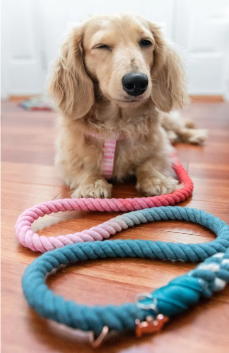 Jack and Jill Leash