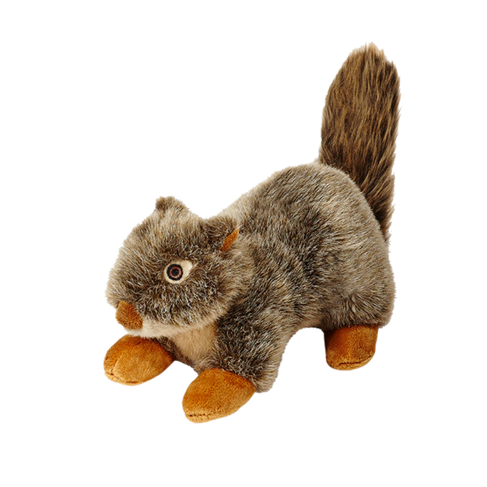 Nuts Squirrel