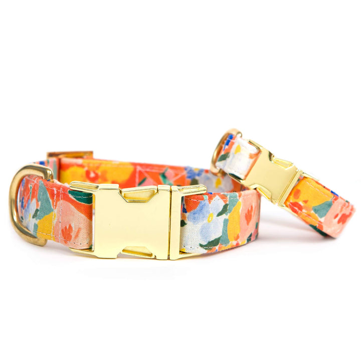 The Foggy Dog - Clementine Dog Collar