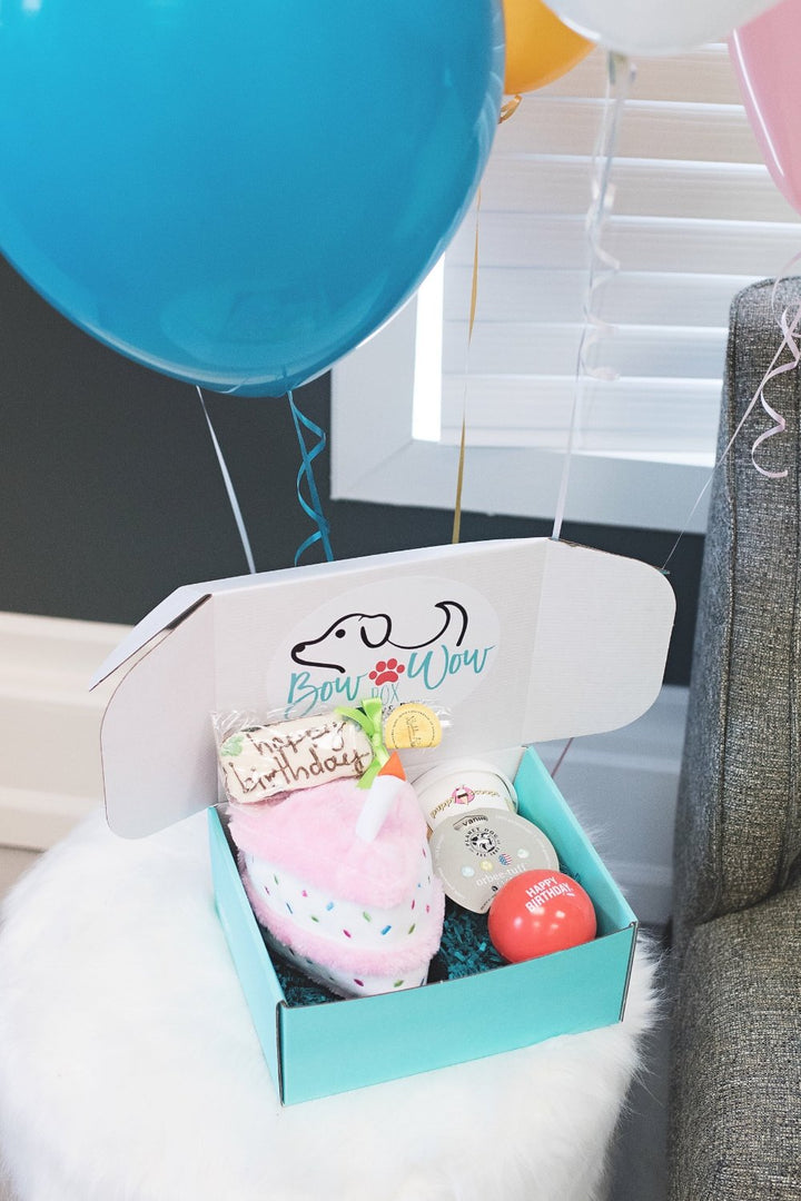 Bow Bow Box Birthday Bundle