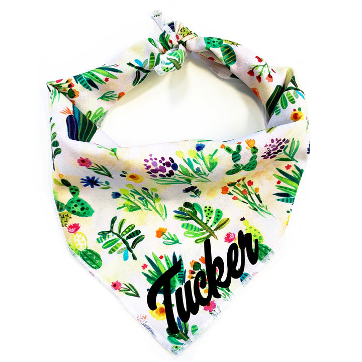 Prickly Pear Dog Bandana