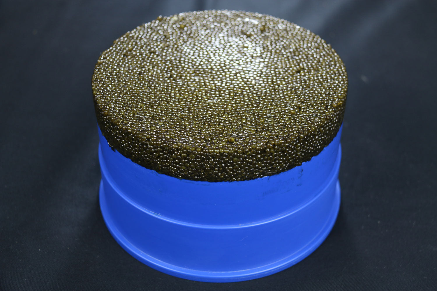 Royal Kaluga Supreme Caviar 2.4lb