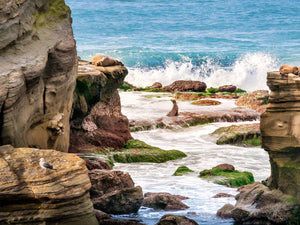 """All Around Me"" - La Jolla, CA"