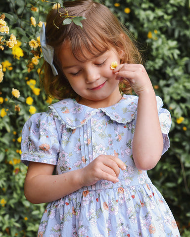 Blue Daisy Vintage Dress