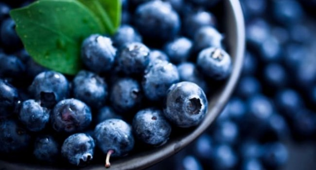 Benefits of blueberries | kulture.store