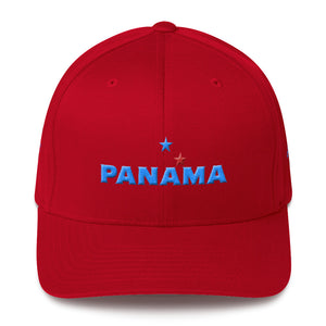 Panama 3D Puff Embroidery (4 sides) Fitted Structured Twill Cap