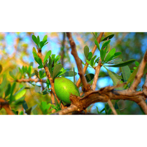 argan oil benefits skin