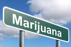 marijuana-cannabis-industry-boom