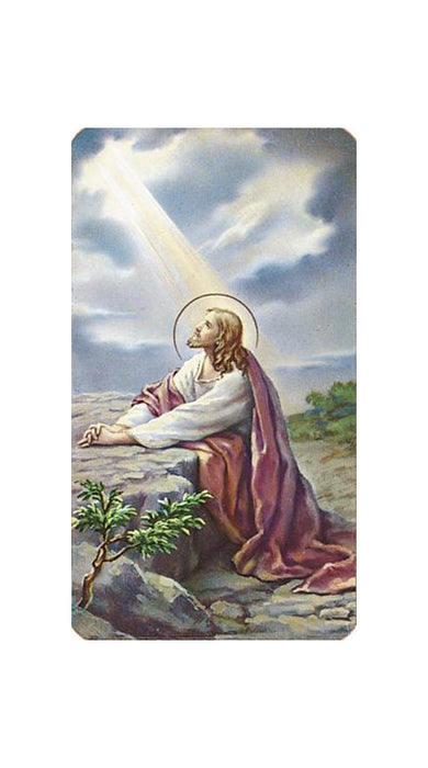 Christ In The Garden Holy Card