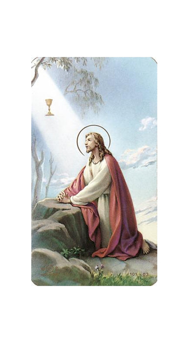 100-Pack - Christ In The Garden Holy Card