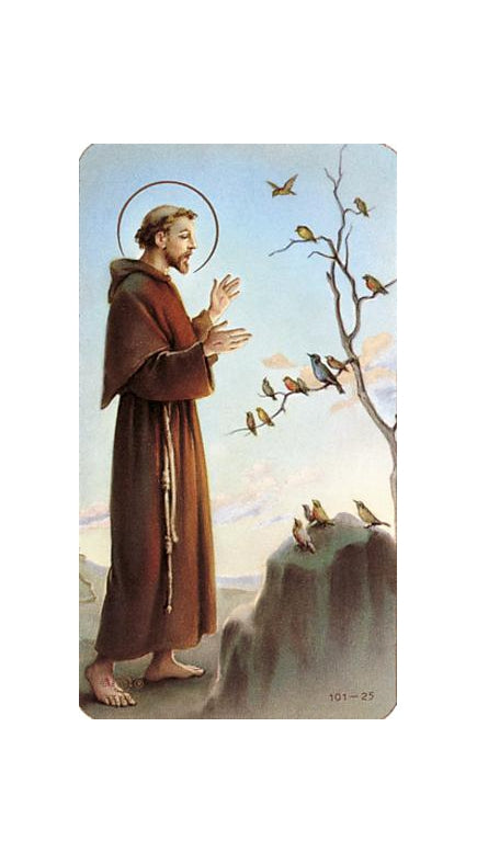 100-Pack - Saint Francis Of Assisi Holy Card