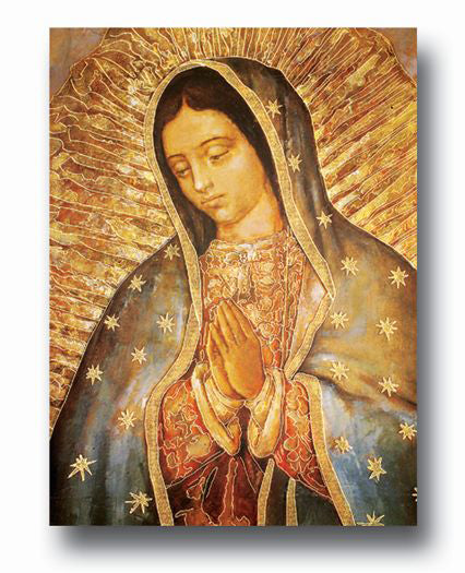 Our Lady of Guadalupe Poster 19 X 27