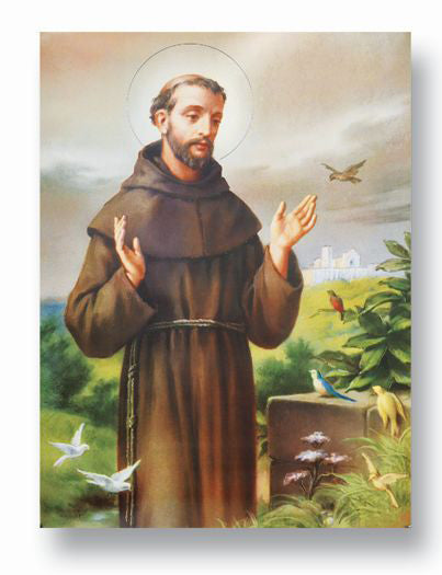 Saint Francis Of Assisi 19 X 27  Poster