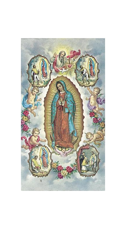 100-Pack - Our Lady Of Guadalupe With Vision Holy Card