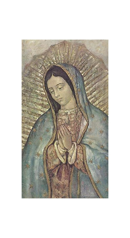 100-Pack - Our Lady Of Guadalupe Bust Holy Card