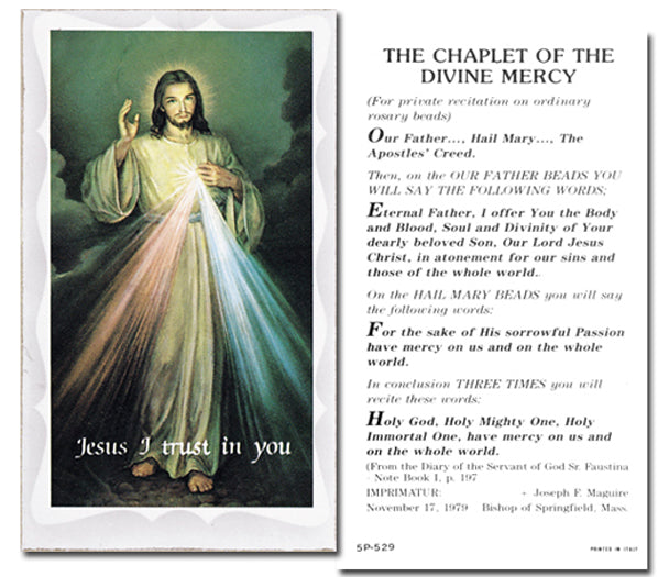 100-Pack - Chaplet Of The Divine Mercy Holy Card with Prayer