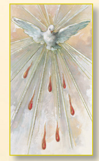 Holy Spirit (Confirmtion) Card - 100-Pack