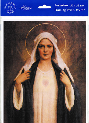 Immaculate Heart Of Mary 8X10 Print 3-Pack