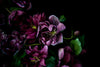 Hellebore Detail Greeting Card