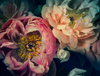 The Masters - Peonies | Helen Bankers Photography