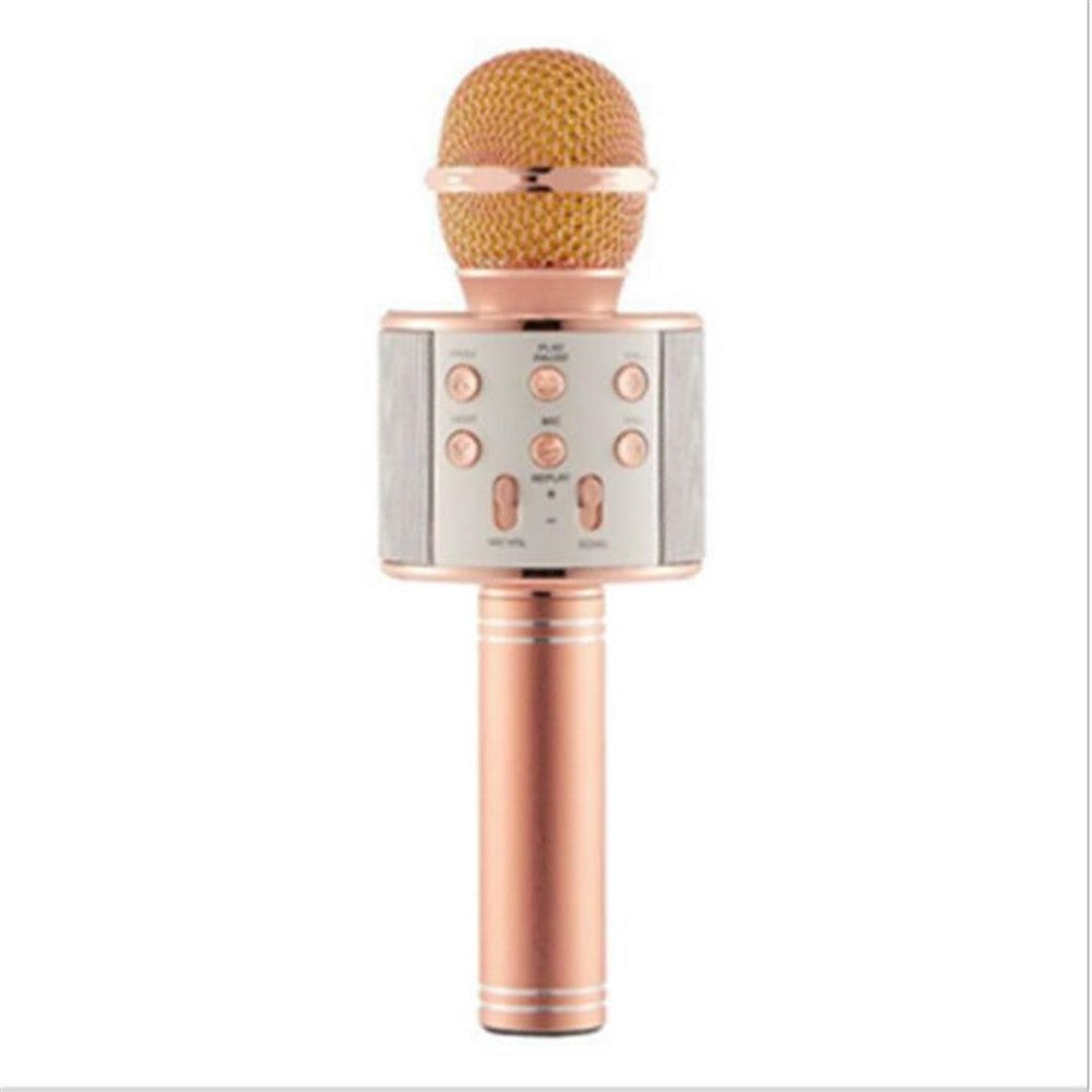 WS 858 Wireless Microphone