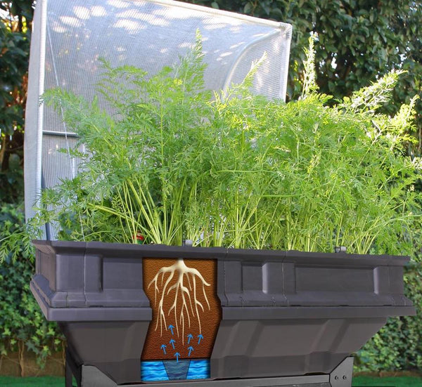 vegepod raised garden bed's self watering system